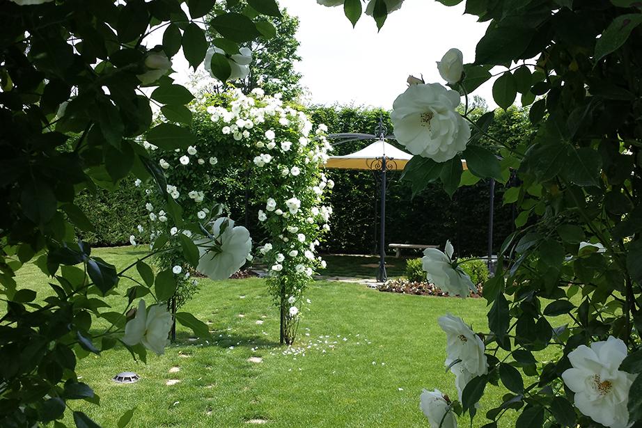 giardino con fiori per matrimonio